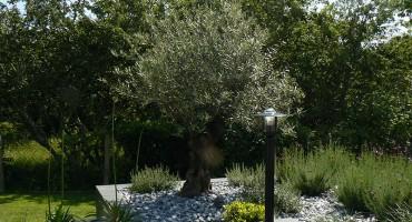 Contemplation d un jardin moderne guillerm fils for Entretien jardin ploemeur